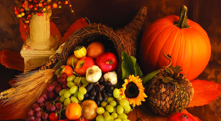 Thanksgiving-Cornucopia-bountiful-harvest-910x500