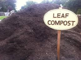 leaf compost picture